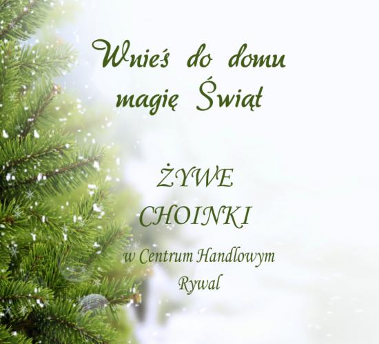 Wnieś do domu magię świąt!